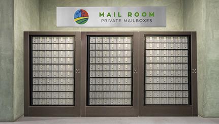 P.O Box Mail Service